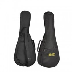 Boston gig bag for concert...