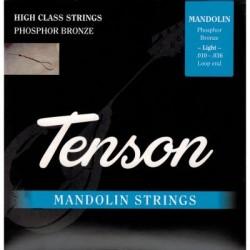 Tenson Strings for mandolin...