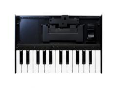 Roland K-25m Potable Keyboard Unit for Roland Boutique Modules