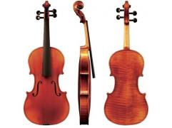 GEWA VIOLIN MAESTRO 41 4/4 Set Up