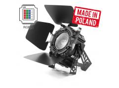 FLASH PROFESSIONAL LED PAR 64 200W 4in1 COB SHORT RGBW + BARNDOOR Mk2